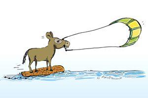 Kitesurfing Donkey