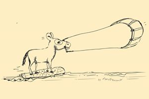 Kitesurfing Donkey PB