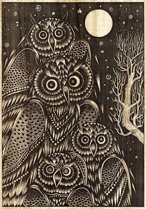 Owl bird of night - Artonpic