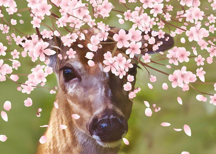 Deer Under Cherry Tree - Delores Knowles