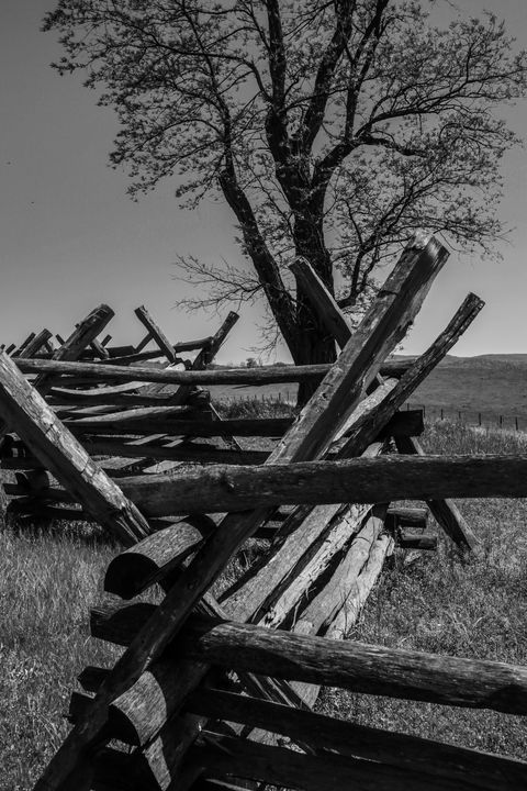 Antietam Battlefield - David Gardner Photography