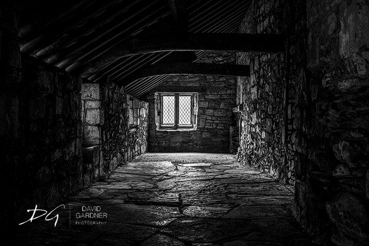 Valle Crucis 3 - David Gardner Photography