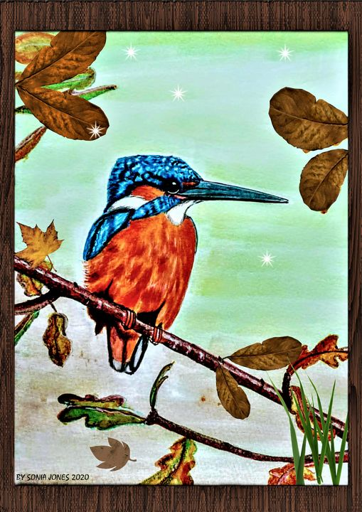 KING FISHER - Sonia Jones
