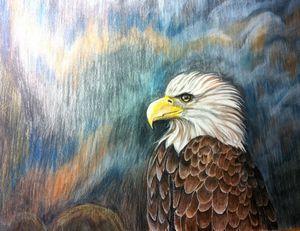 Mountain top eagle