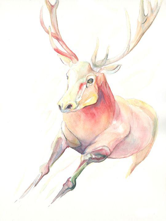 Rainbow Deer - NopoArt