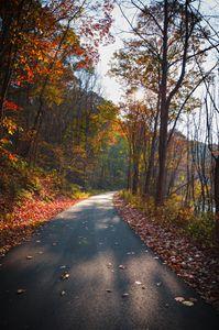Path on Autumn Day