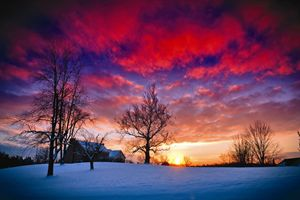 Snow-Covered Sunset