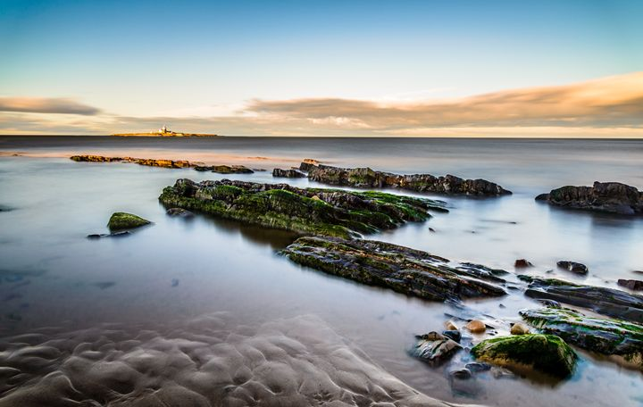 Coquet Island - Bob Fogerty Photography