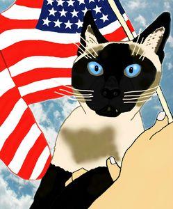 """Patriotic Siamese Cat Beauty"""