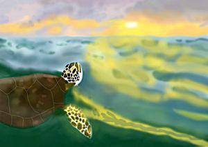 """Enchanted Ocean"""