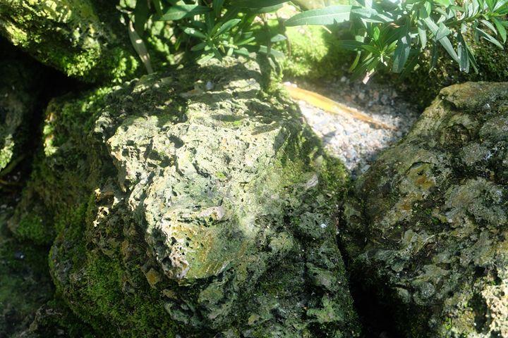 Magical Rocks - Michael L Childs