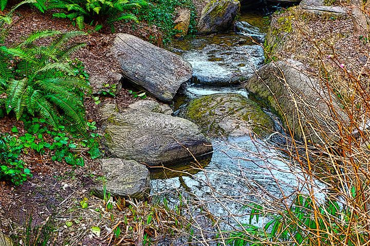 Stream Beauty - Michael L Childs