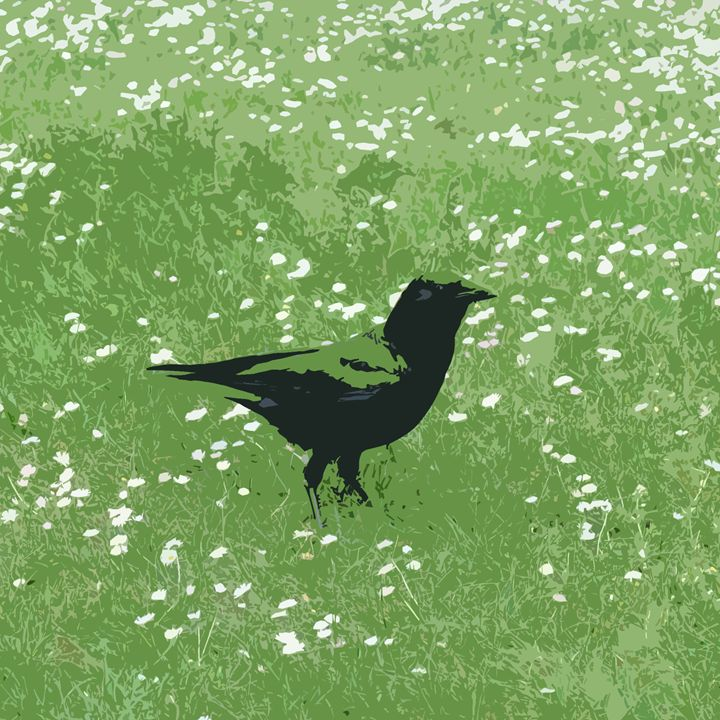 Green Grass Crow - Michael L Childs