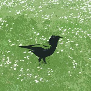 Green Grass Crow