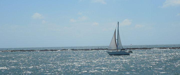Wayward Sail - GreyFox Crafts