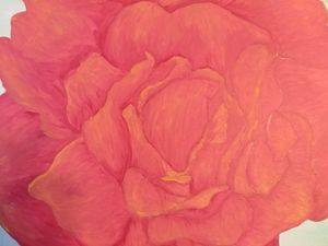Study of Roses; part one