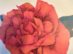 Study of Roses; part two