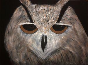 Owl Survivor