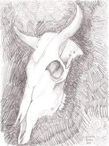 Cow Skull in pencil