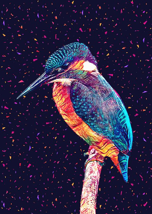 The Humming Bird - Gab Fernando