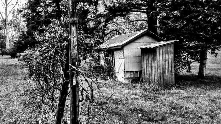 The Shack Out Back - Kristian's Vision