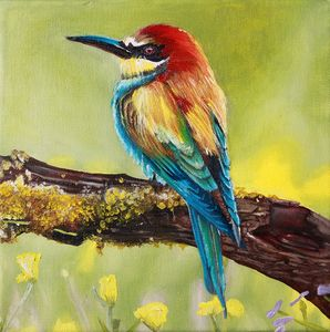 Colourful Bird - Adrian Pictures, paintings etc