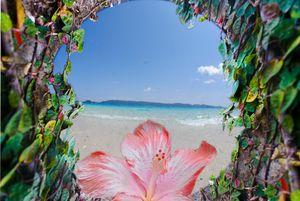 Okinawa Impressions