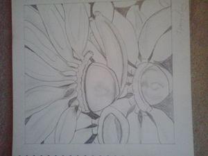 Guess Me Sketch