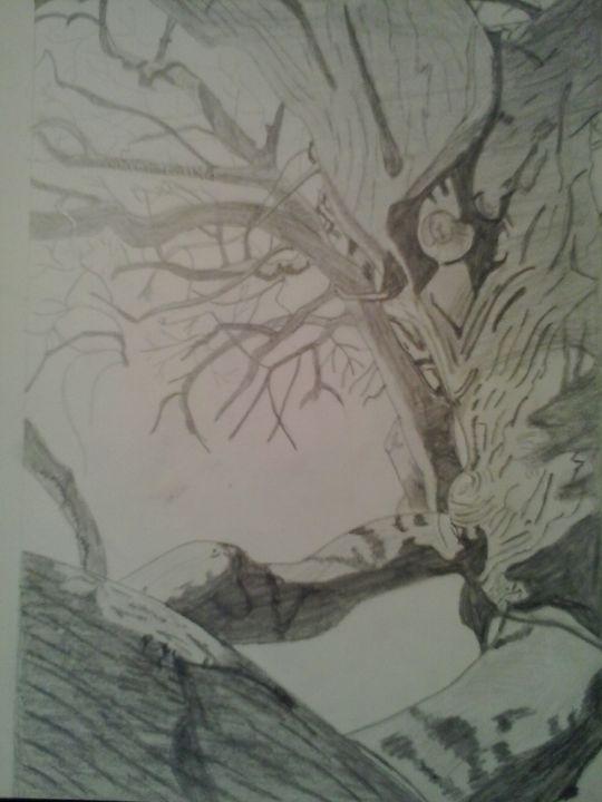 Crooked Tree sketch - Nancy Love Laing