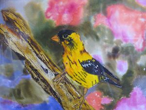 Canary in the Garden