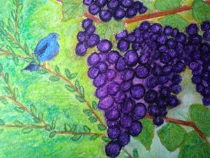 Blue bird and grapes