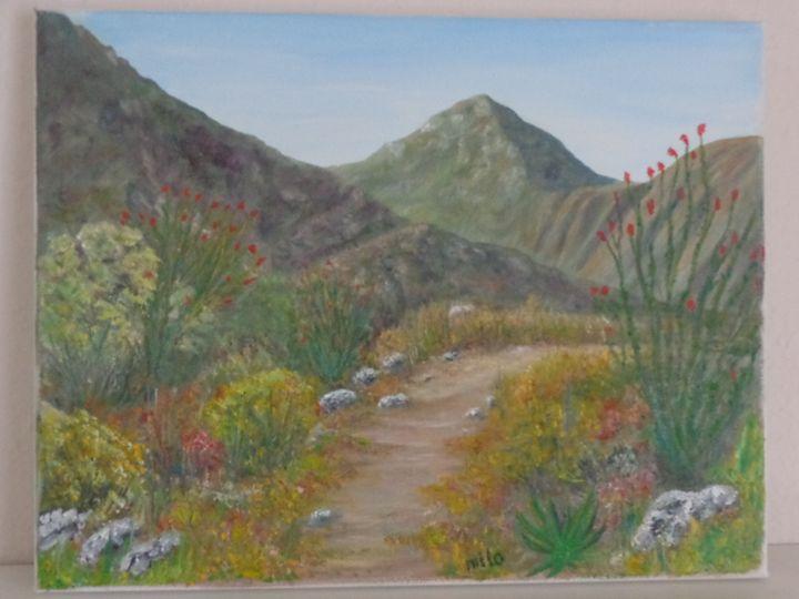 Desert trail - Milorad Vujisic - Milo