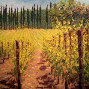 Biondi Santi Vineyards