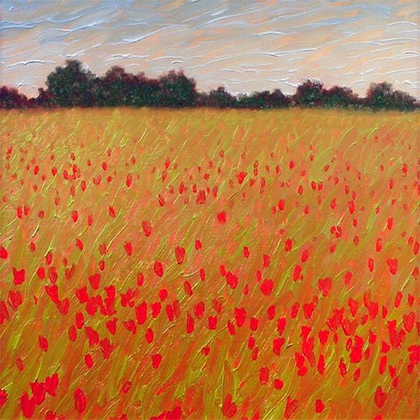 Poppy Fields - Gordon Haas