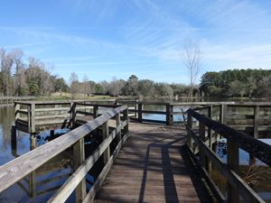 Footbridge, Lake Leon
