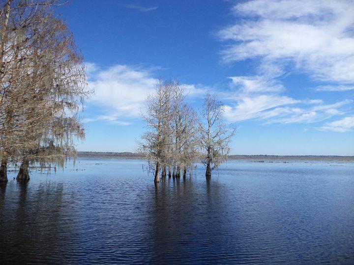 Lake Miccosukee - MRivera