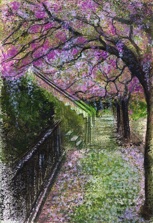 Cherry Blossom Walk - Rembrandz