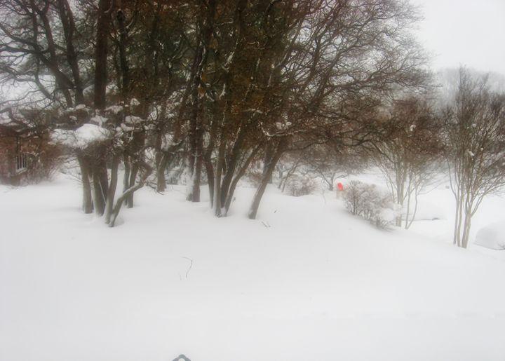 Winter - MAE Art Gallery
