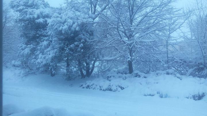 Snow day - Kristi aka drgn