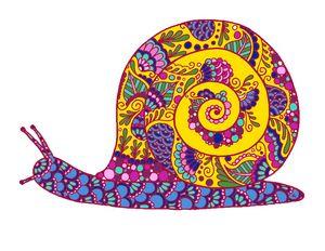 Henna Snail