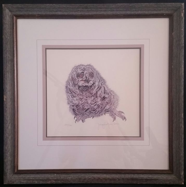 Baby Eaglet by Jacqine Vaux - Hernandez Art