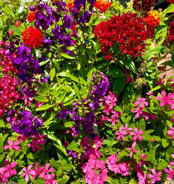 FLOWERS! - Enlightened Soul Art Gallery