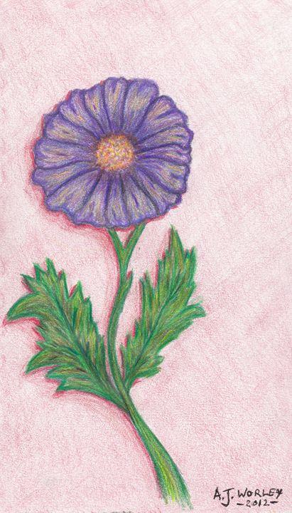 Purple Flower - AJ Worley