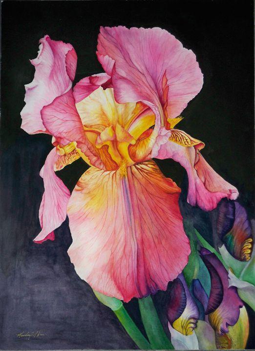 Pink Lady - Michael A. Davis