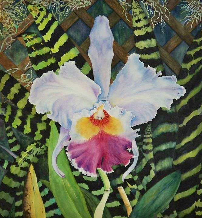 White orchid michael a davis paintings prints flowers white orchid michael a davis mightylinksfo