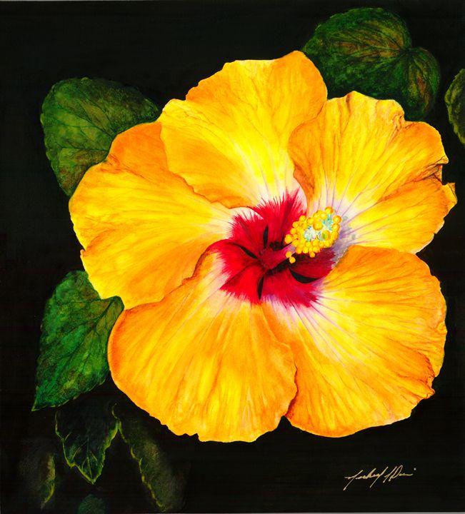 Hibiscus - Michael A. Davis