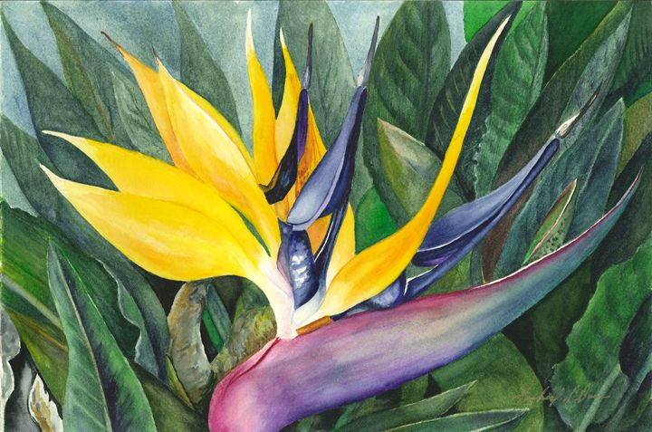 Bird of Paradise - Michael A. Davis