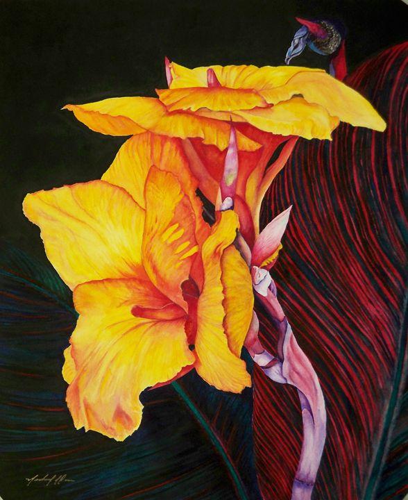 Canna Tropicana - Michael A. Davis