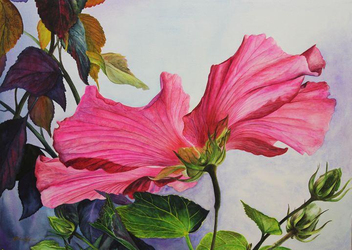 Pink Hibiscus - Michael A. Davis