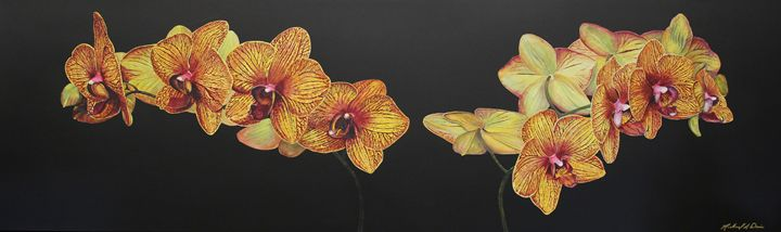 Twin Sogo Orchids - Michael A. Davis